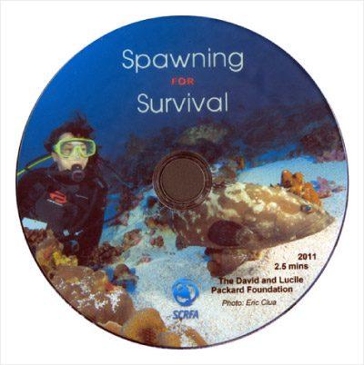 Spawning for Survival – short film