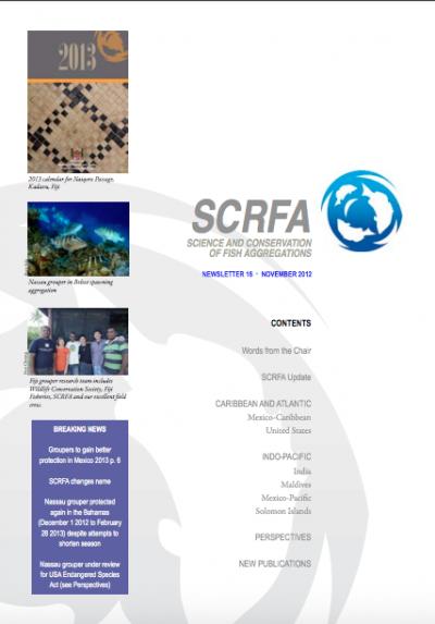 Newsletter 16 (November 2012)