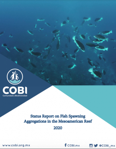 Status Report on Fish Spawning Aggregations in the MesoAmerican Reef